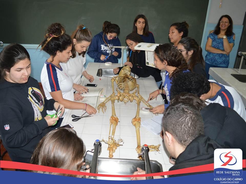 Alunos da 2ª Série do EM realizam experiência de reconhecimento dos Ossos em Laboratório